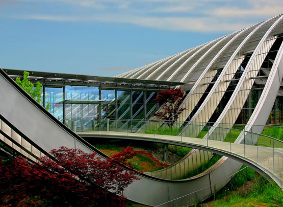 School of Planning & Architecture